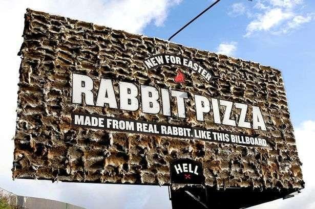 pizza al coniglio