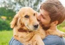 cane meglio dell'uomo