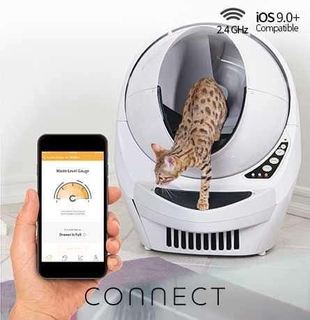 lettiera per gatti - lettiera automatica - Litter Robot: la lettiera per gatti che si pulisce da sola. Automatica e connessa al tuo telefono.