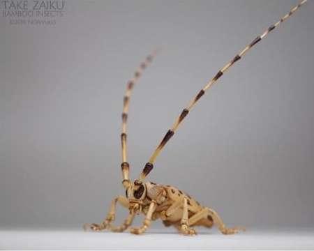 Noriyuki, l'artista che realizza insetti lavorando il bamboo