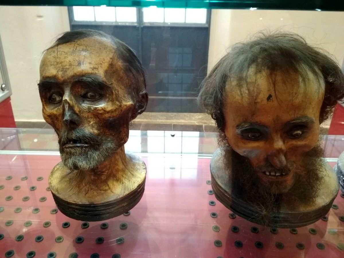 Museo Gorini pietrificazione