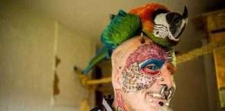 uomo pappagallo