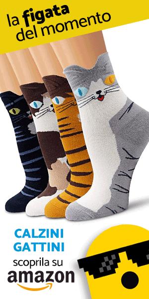 calzini gattini