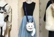 copertina borse gatti