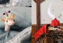 cappelli per serpenti