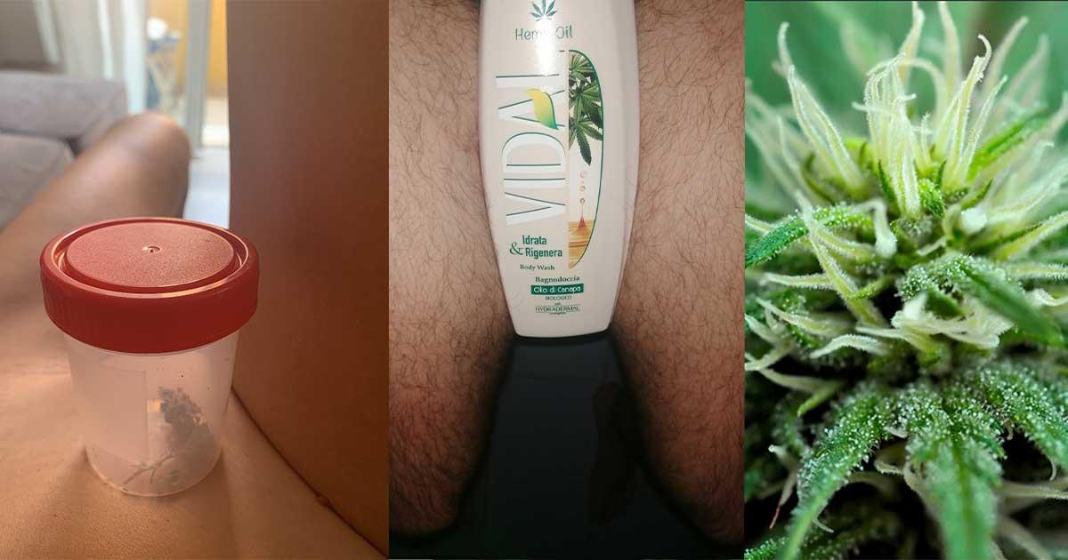 nudi per la cannabis twitter